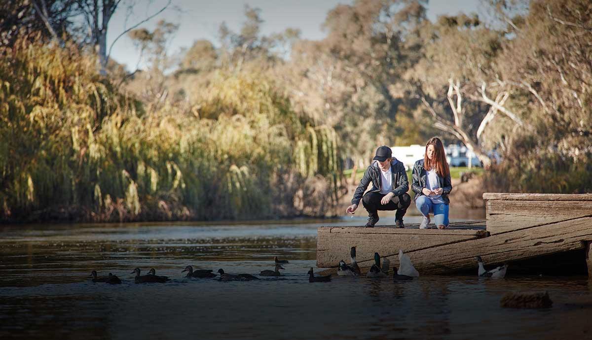 Couple feeding ducks on Swan Hill waterfront